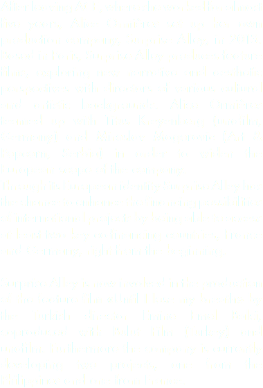 After leaving ACE, where she worked for almost five years, Alice Ormières set up her own production company, Surprise Alley, in 2013. Based in Paris, Surprise Alley produces feature films, exploring new narrative and aesthetic perspectives with directors of various cultural and artistic backgrounds. Alice Ormières teamed up with Titus Kreyenberg (unafilm, Germany) and Miroslav Mogorovic (Art & Popcorn, Serbia) in order to widen the European scope of the company. Through its European identity Surprise Alley has the chance to enhance the financing possibilities of international projects by being able to access at least two key co-financing countries, France and Germany, right from the beginning. Surprise Alley is now involved in the production of the feature film «Until I lose my breath» by the Turkish director Emine Emel Balci, coproduced with Bulut Film (Turkey) and unafilm. Furthermore the company is currently developing two projects, one from the Philippines and one from France.