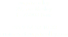 surprise alley 29, rue Meslay F - 75003 Paris +33 9 54 32 10 33 ormieres et surprisealley.com